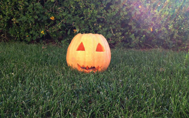 REVIVING HALLOWEEN TRADITIONS