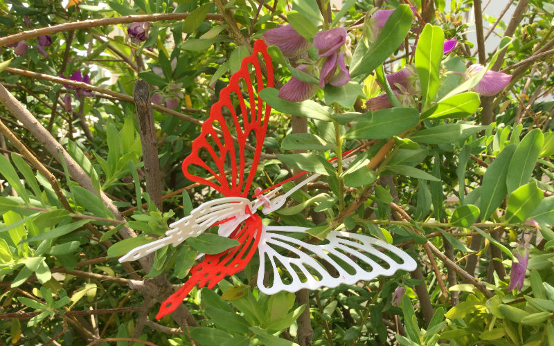 EXPLORING SCIENCE IN ENGLISH: THE LIFE CYCLE OF A BUTTERFLY